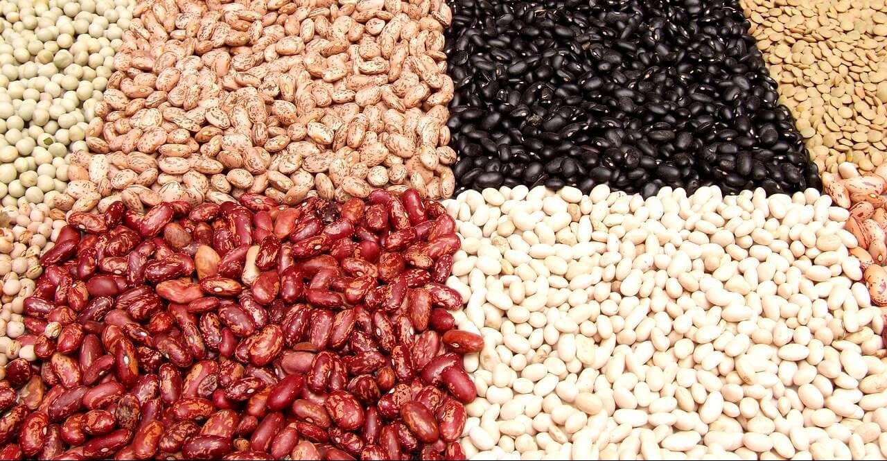 string-bean-3861864_1280
